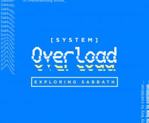 SystemOverload-Insta2