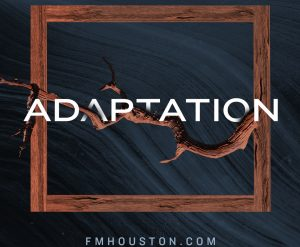 Adaptation-S2