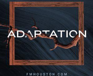 Adaptation-S2