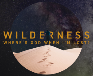 Wilderness S2