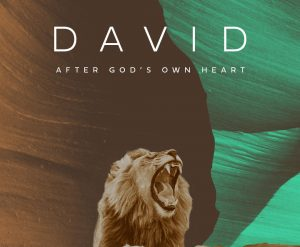 David-S2