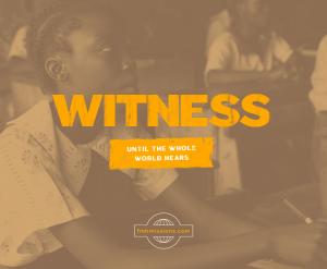 Witness-S2