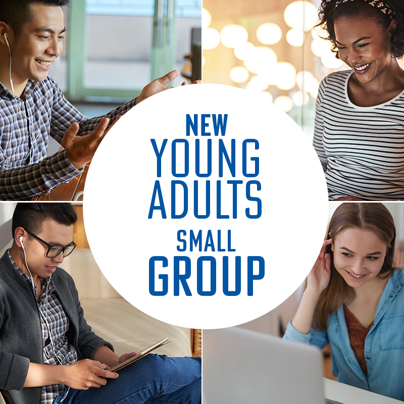 Image of New Young Adults Small Group